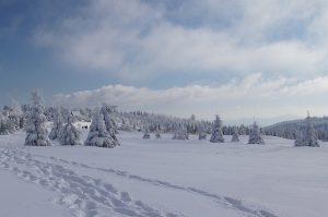 zimowy-wyjazd-na-narty-czechy